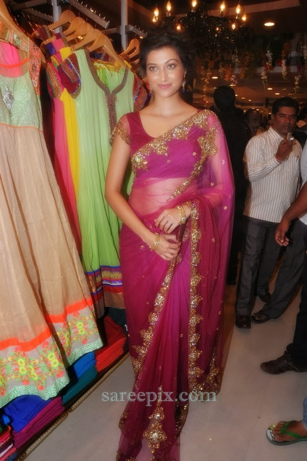 Hamsa-nandini-Kalamandir-showroom-launch