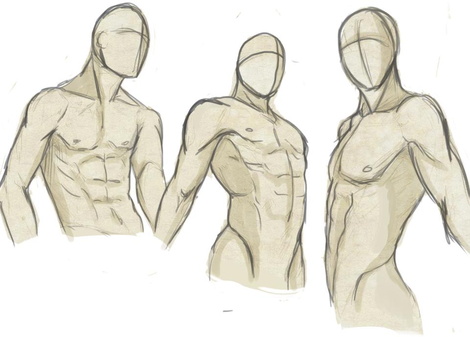 anime male anatomy - 960×688