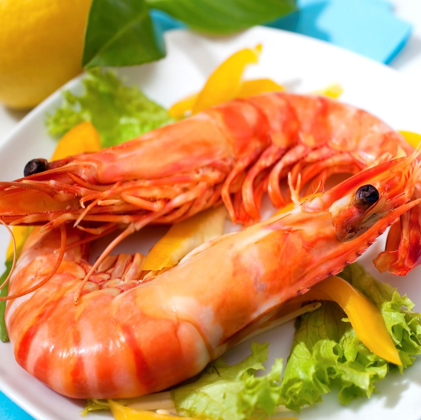 Banco de im genes 9 fotos de comida del mar carnes y - Fotos de comodas ...