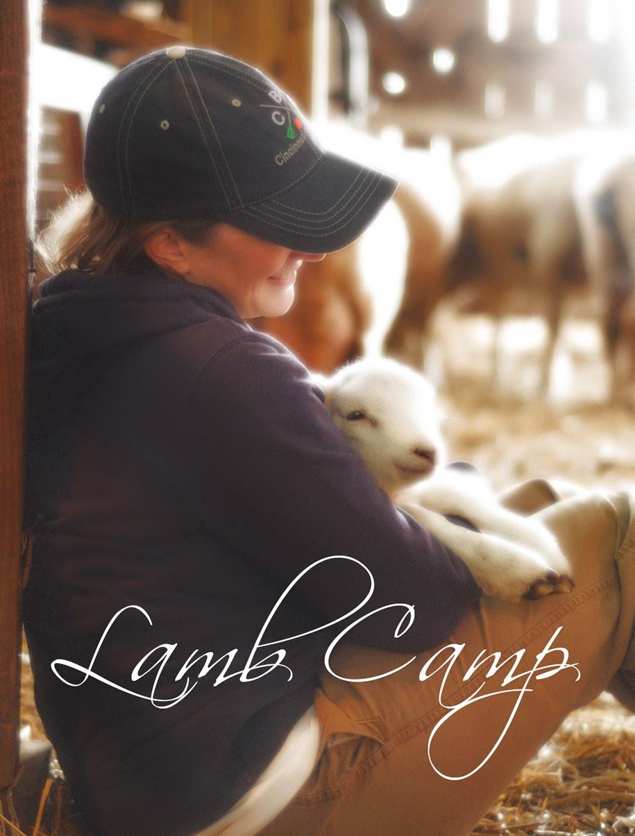 Lamb Camp