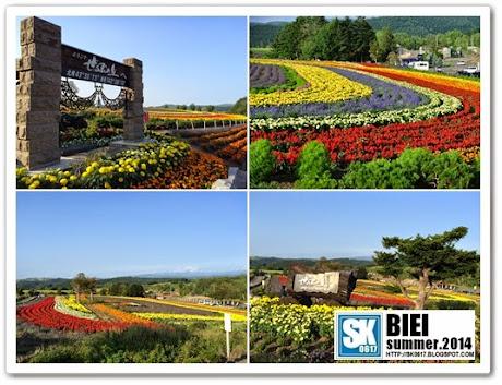 Biei Japan - Zeburu Hills