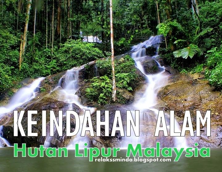 Menikmati Keindahan Alam dan Berekreasi di Hutan Lipur Malaysia