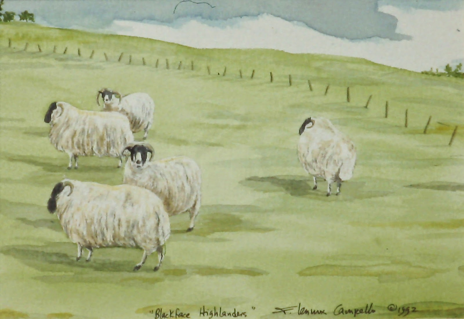 Blackface Highlanders (Near Edzell, Angus, Scotland)  8x10 inches. Watercolor on paper, c. 1992  In a private collection in the U.S. By Lenny Campello