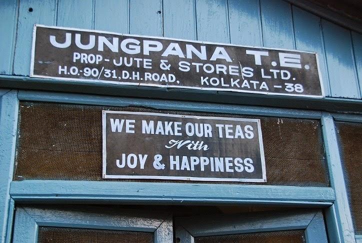 Jungpana tea garden Darjeeling