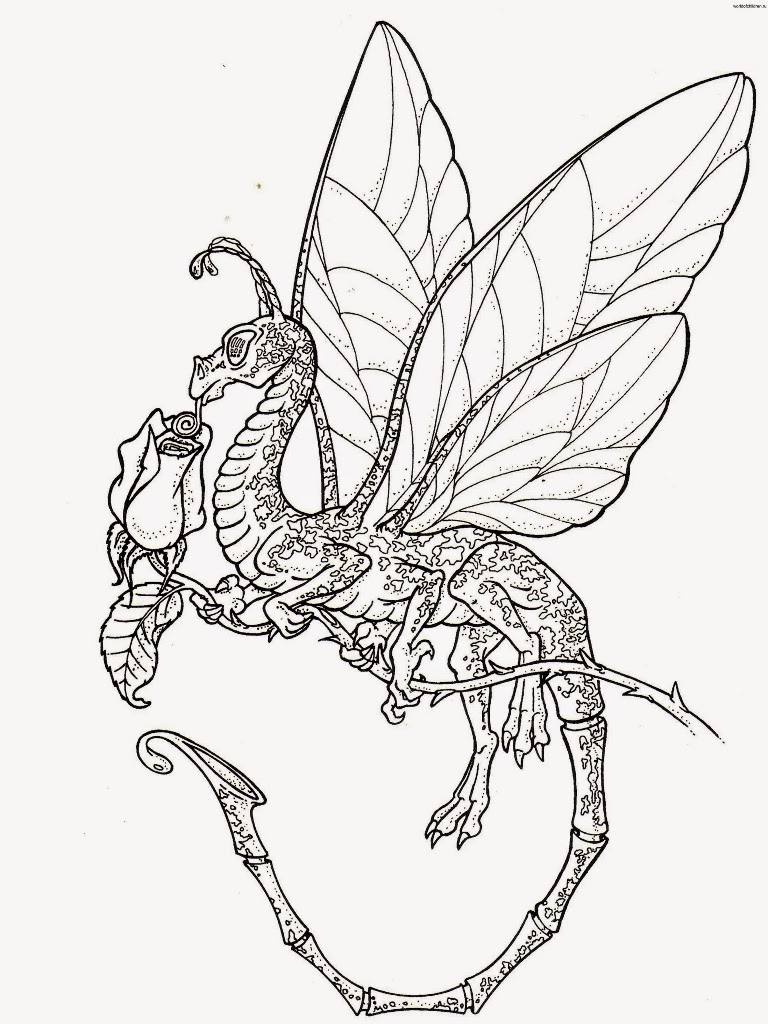 dragons coloringfilminspectorcom - Coloring Pages Dragons Fairies
