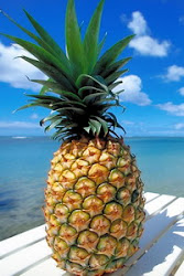 fungsi kegunaan buah nanas