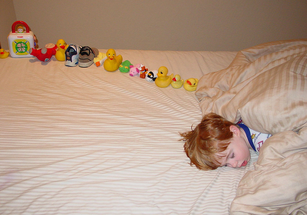 Toys Of Autism : Tywkiwdbi quot tai wiki widbee quinn and his ducks a