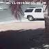 فيديو مذهل لقطة تنقذ طفل من بين أسنان كلب