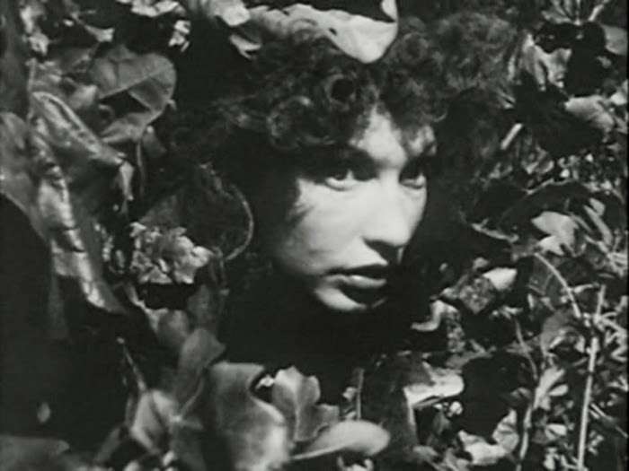 maya deren at land analysis 1 renata jackson, the modernist poetics and experimental film practice of maya deren (1917-1961) (lewiston: 11 maya deren, 'the influence of the french symbolist school on anglo-american poetry,' (preface to ma thesis an analysis of deren's films meshes of the afternoon, 1943, at land, 1944, ritual in.
