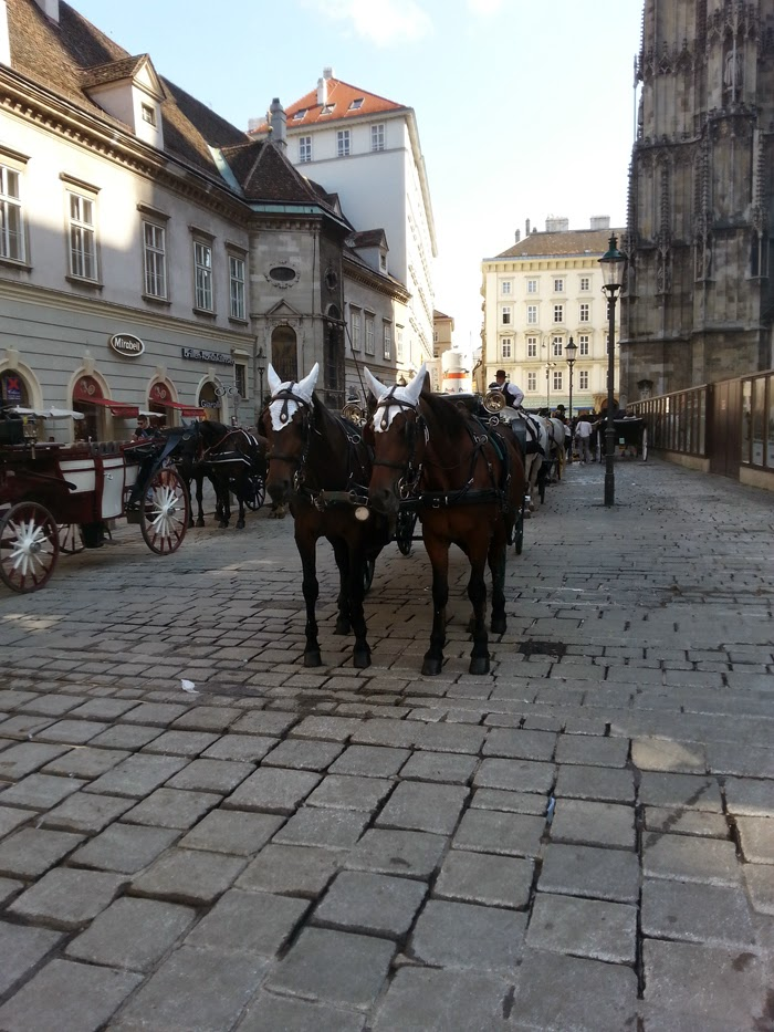 Carriage in Vienna