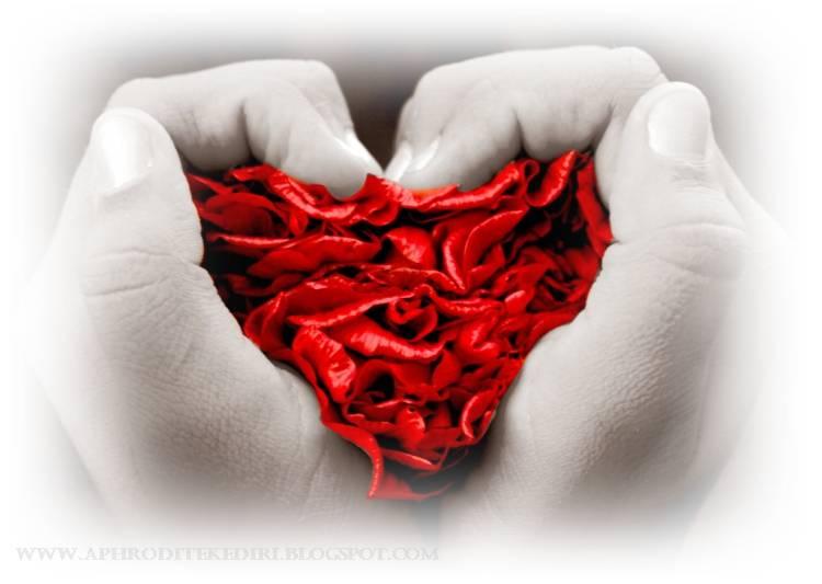 Ucapan Selamat Pagi Romantis - Berita Terkini