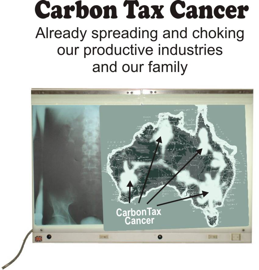 carbon trading+research papers