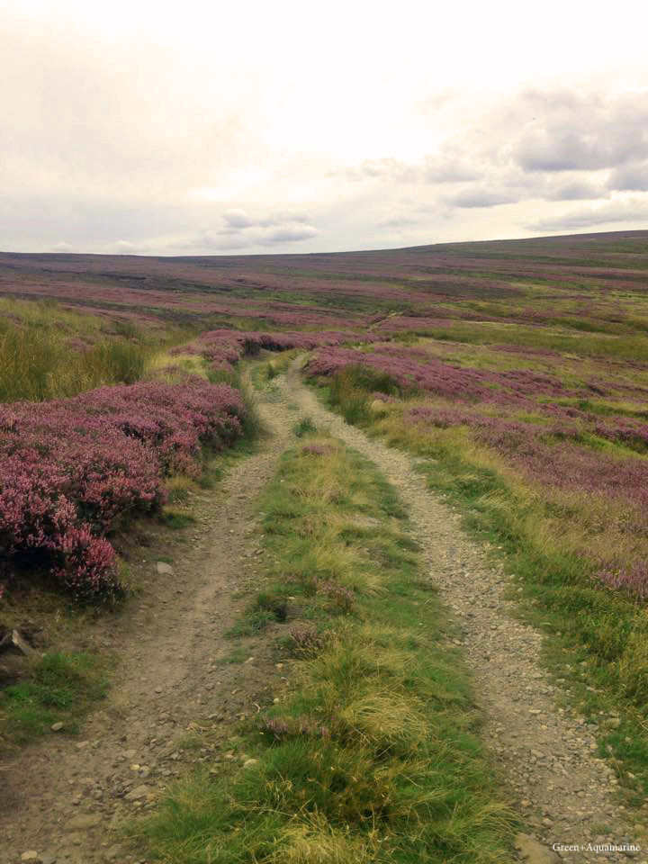 Moorland walks in National Park, the North Yorkshire Moors. Read for health and wellbeing posts.