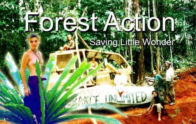 Forest Action:  Saving Little Wonder 3 Forest--Action