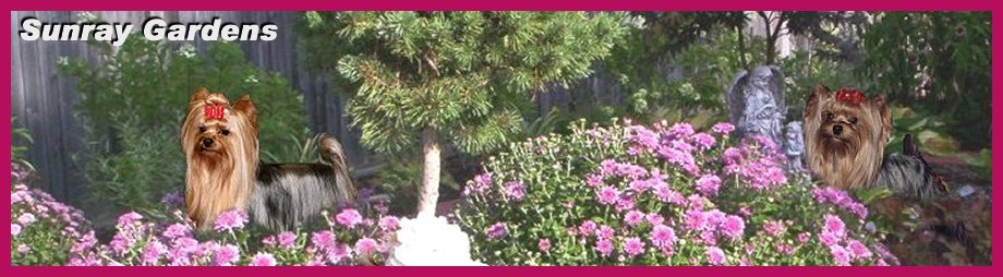 Sunray Gardens