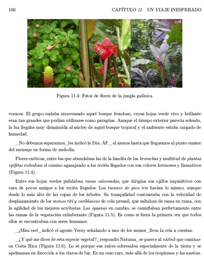 Matemáticas para Exploradores: Proyecto INTERDISCIPLINAR Dinámico ...