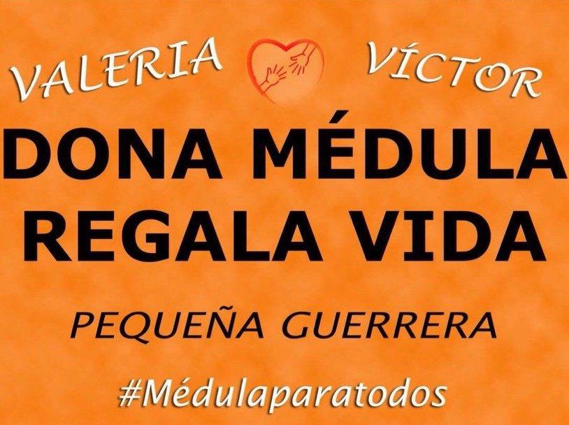 "Proyecto ""Valeria"""