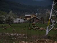 Gotse Deltsef  δρομοι βουλγαριας