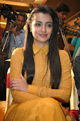 Trisha photos at Cheekati Rajyam event-thumbnail-8