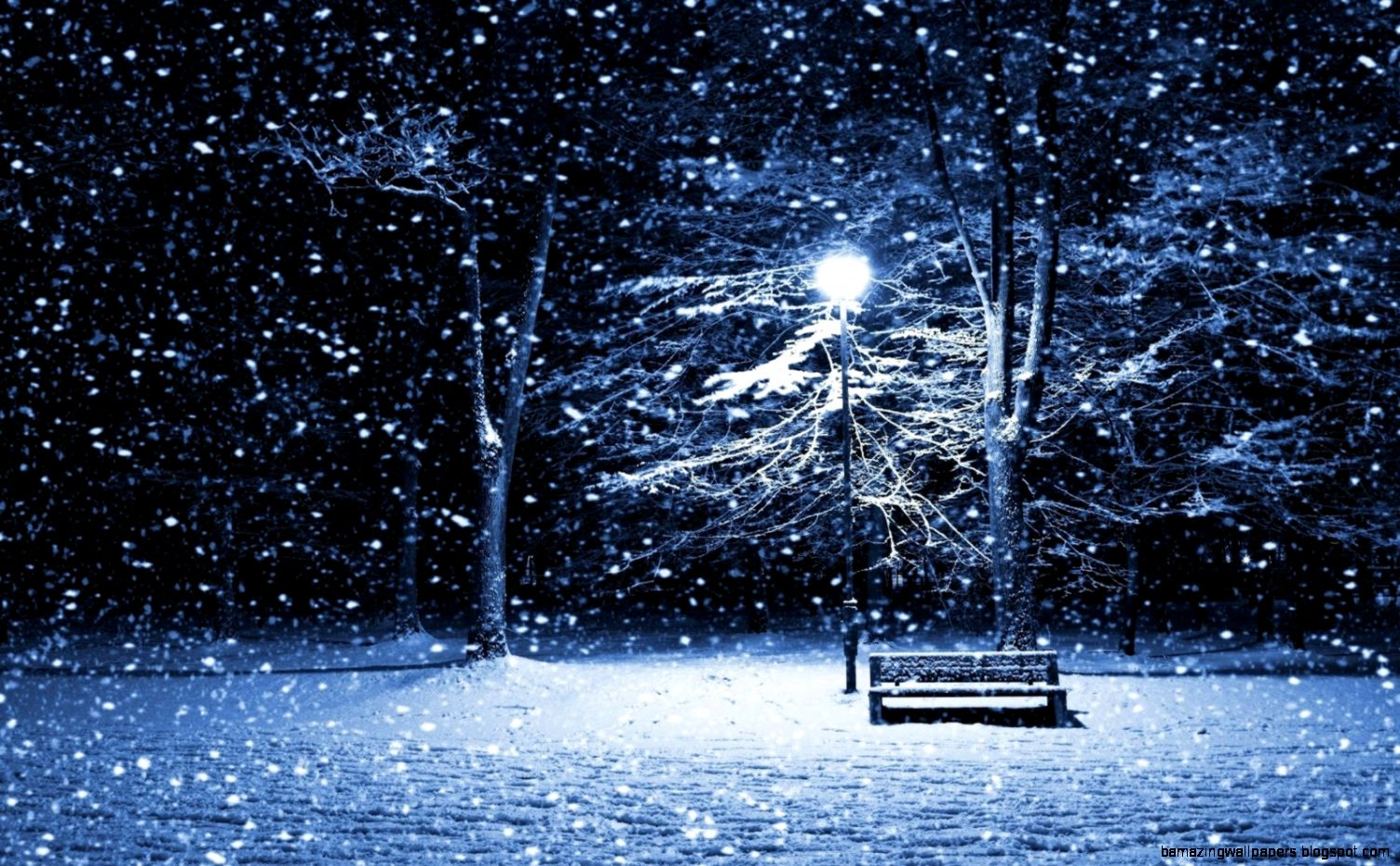 Real Snowflake Falling   wallpaper