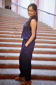 Janani Iyer Stills At Bhadram Movie Press Meet-thumbnail-31