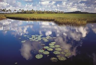 UNESCO - 2018-2028 - Década Internacional para Ação, Água para o Desenvolvimento Sustentável