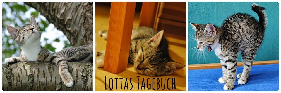 Lottas Tagebuch - Aus Sicht einer Katze