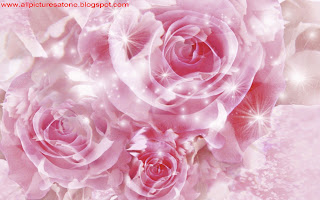 ROSE DAY WALLPAPERS DOWNLOAD FOR FREE, ROSE DAY WALLPAPER