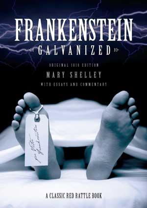 frankenstein as a gothic novel critical essays
