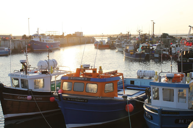 Seahouses harbour fishing boats North Sunderland Northumberland Northumbria coast sunrise