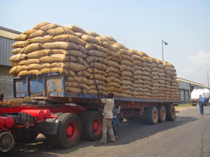 omnibus agro trading company