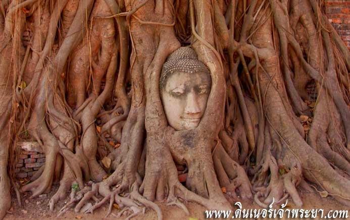 วัดมหาธาตุ อายุนานกว่า 600 ปี เป็นศูนย์รวมจิตใจของชาวอยุธยาสมัยนั้น เป็นสาเหตุที่เมื่อเกิดสงครามไทย - พม่า วัดแห่งนี้จึงถูกเผาทำลายเกือบทั้งหมด