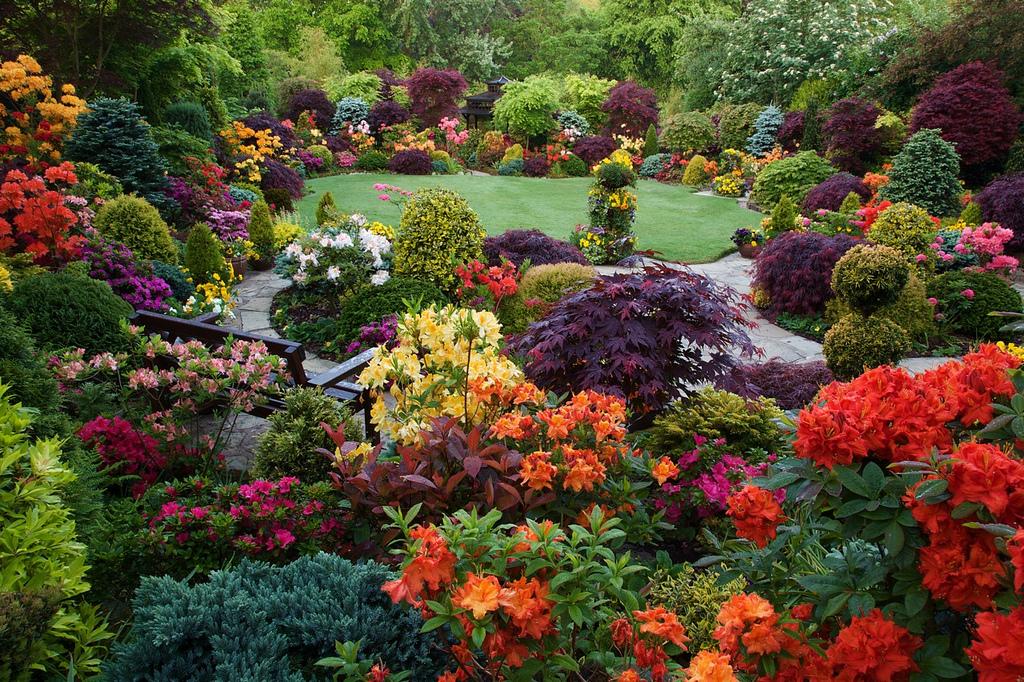 Four Seasons Garden Spettacolare Clicca La Foto