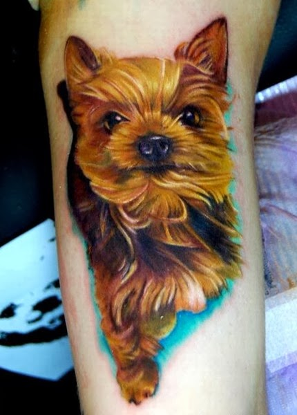 The Best Dog Tattoos (Gallery 2)