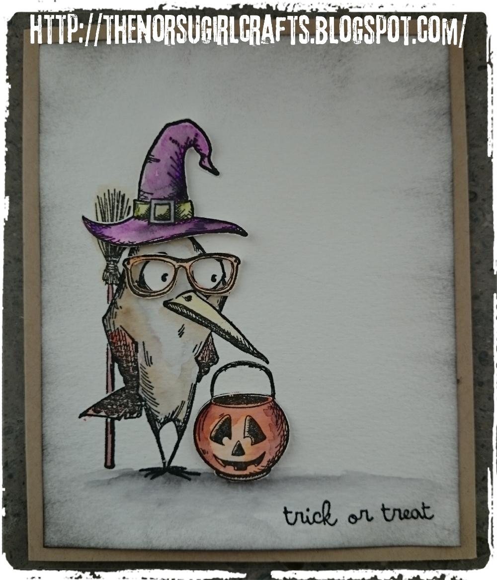 Halloween bird crazy