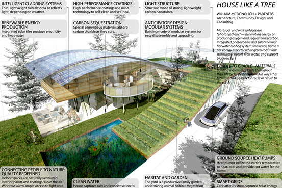 Arsitektur Biologis Official Blog Of Andre Ardiyanto