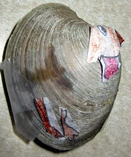 O peru feito de uma concha.