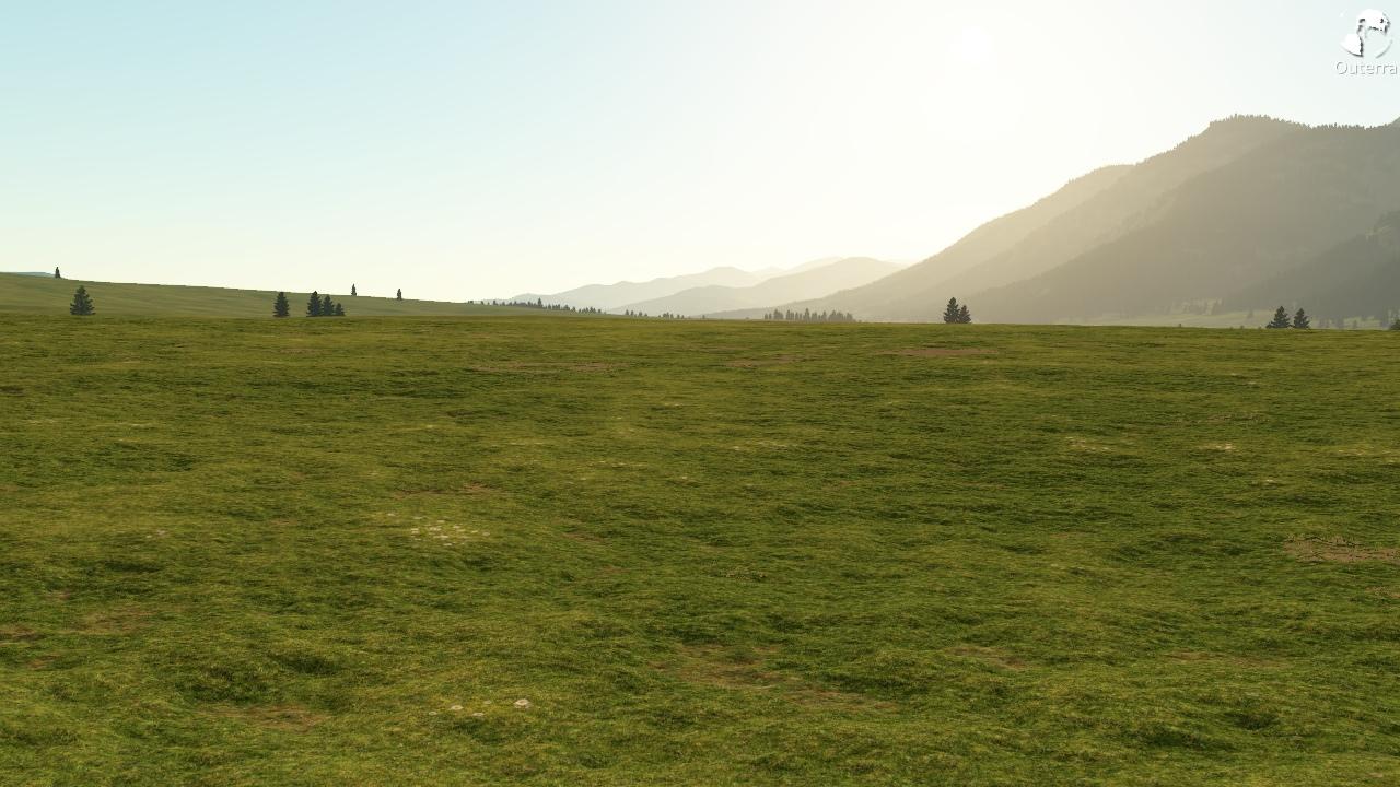 grass1n.jpg