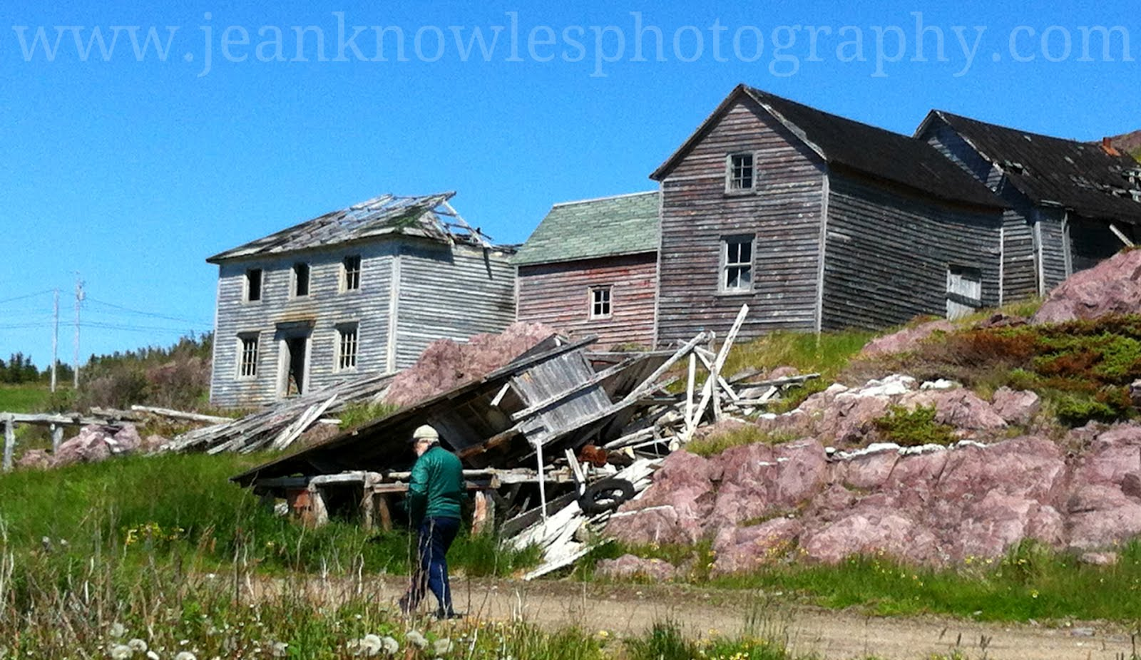 Adventures on the eastern edge june 2012 for Newfoundland houses