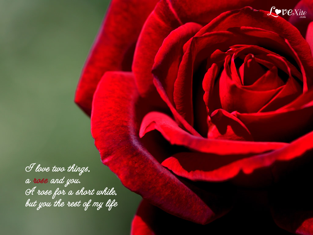 Love Wallpaper With Images : Romantic Love Wallpapers With Quotes. QuotesGram