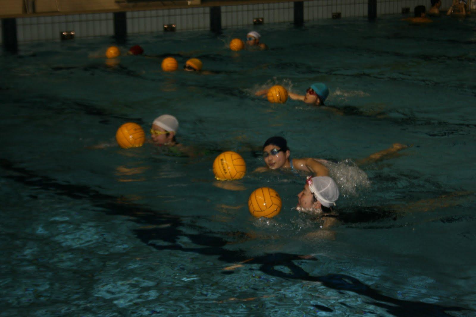 連盟 水泳 福岡 県