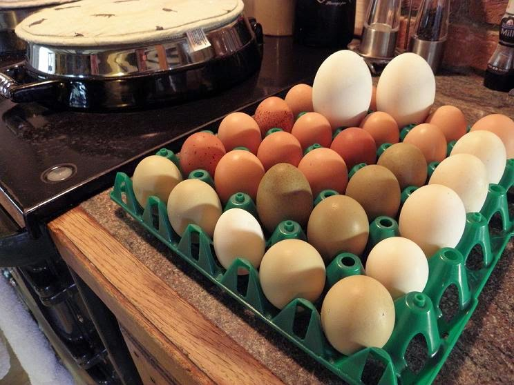 eggs and egg storage in the kitchen
