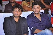 Veta Audio Release function Photos Gallery-thumbnail-12