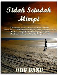 Novel : TiDaK SeInDaH mIMPi