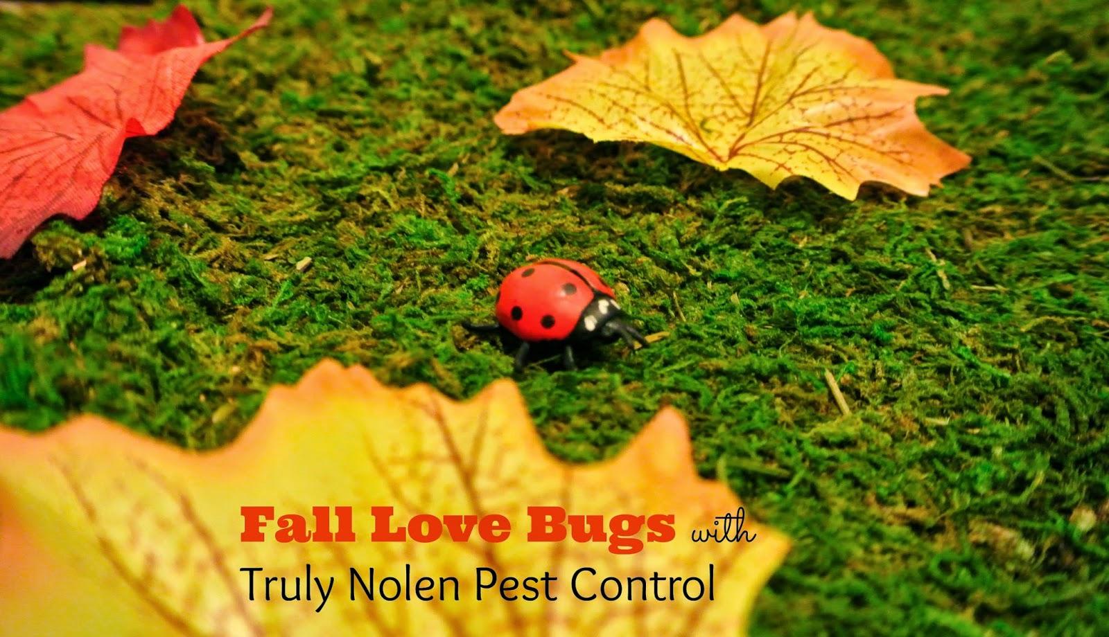 Gardening, Fall Plants, Pests in Gardens