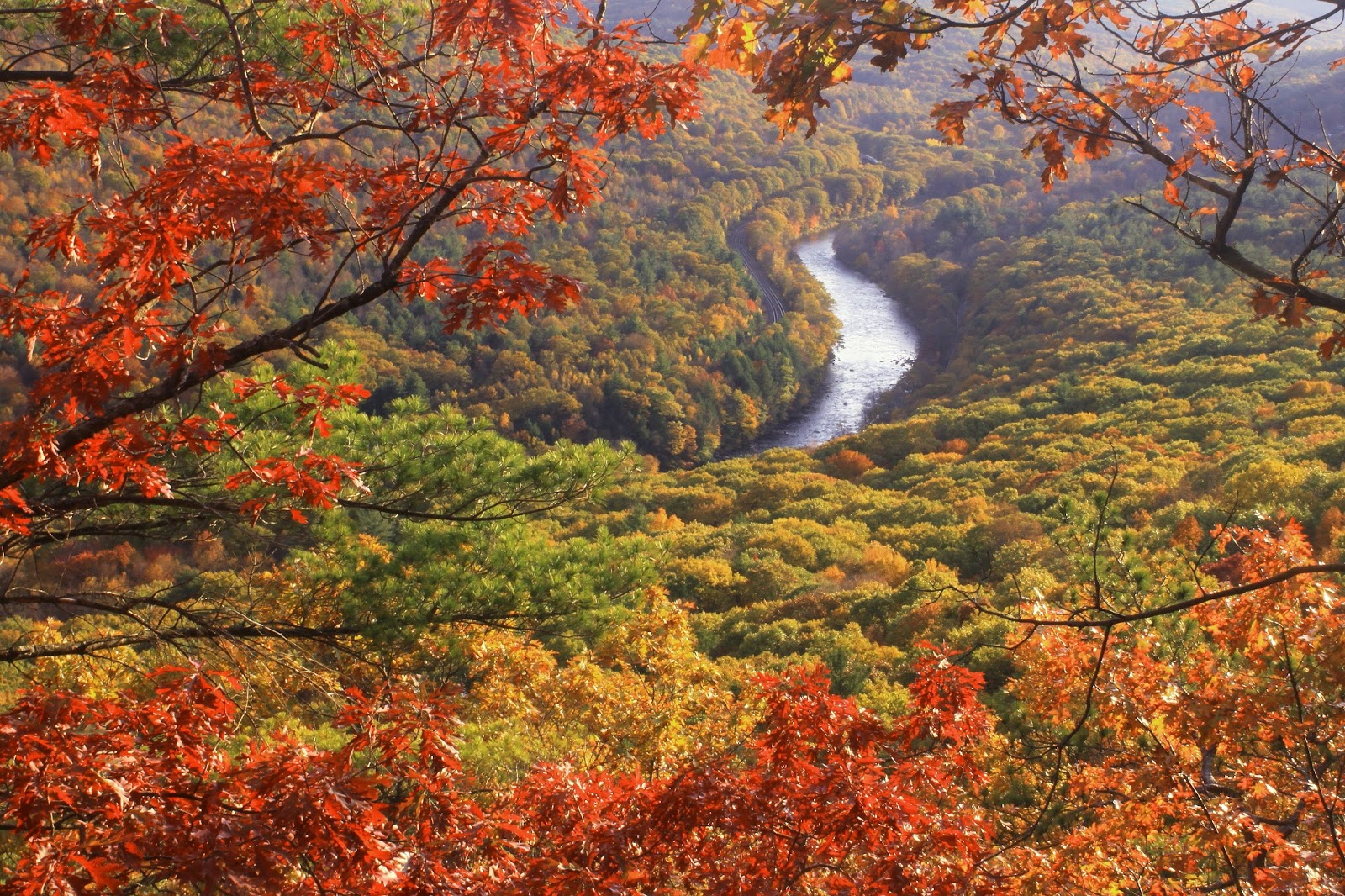 Foliage and the millers river from erving ledges photo by john burk