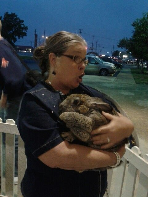 I love rabbits!