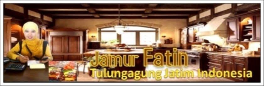 JAMUR FATIN TULUNGAGUNG