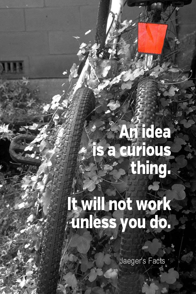 visual quote - image quotation for ACTION - An idea is a curious thing. It will not work unless you do. - Jaeger's Facts