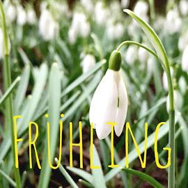 Spiel-und Bastelideen für den Frühling